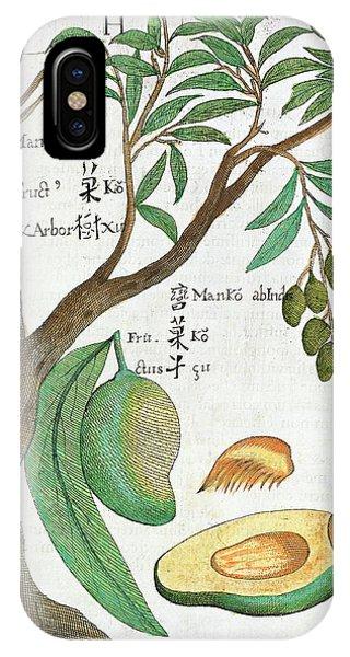 Mango Tree And Fruit IPhone Case