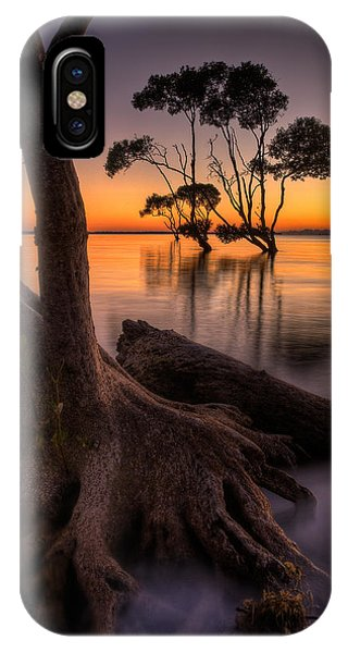 Mangroves Of Beachmere IPhone Case