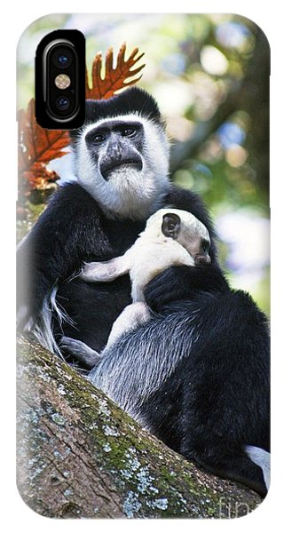 Mantled Guereza Mother And Baby Phone Case by Brian Gadsby