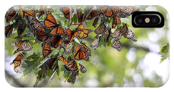 Many Migrant Monarchs IPhone Case