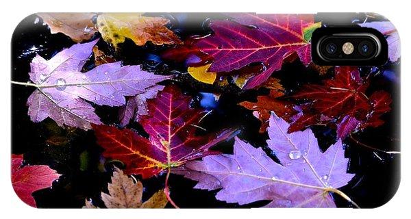 Maple Leaf Float IPhone Case