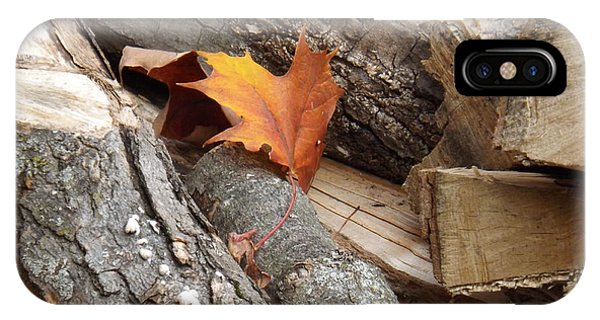 Maple Leaf In Wood Pile IPhone Case