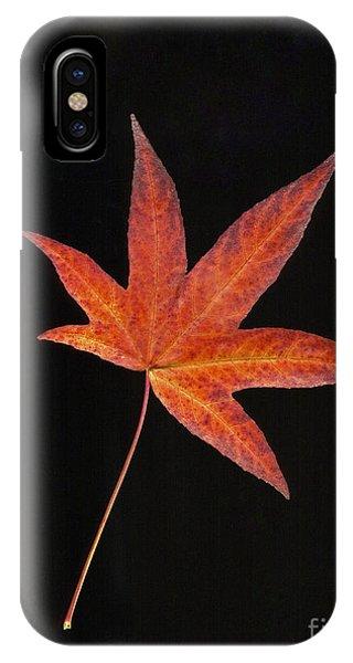 Maple Leaf On Black 2 IPhone Case