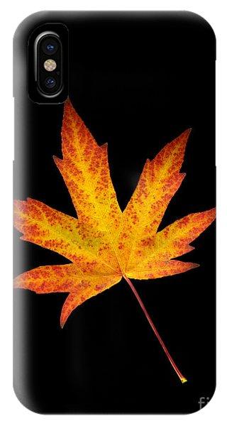 Maple Leaf On Black IPhone Case