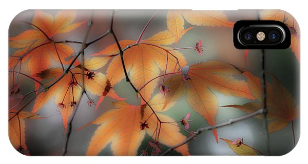Maple Leaves 2 IPhone Case