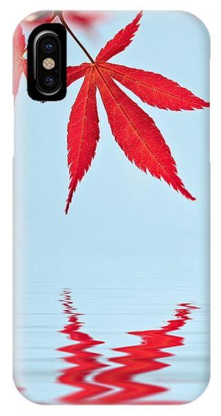 Maple Reflection IPhone Case