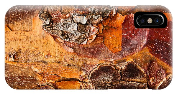 Maple Tree Bark IPhone Case