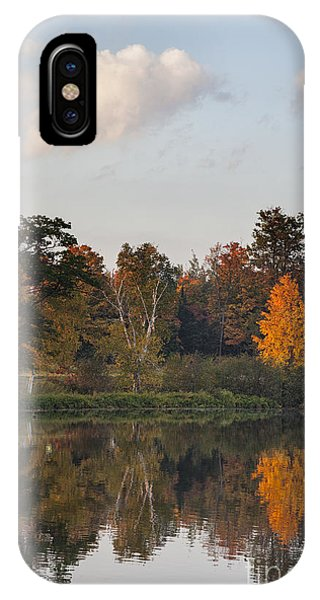 Maple Tree Reflection IPhone Case