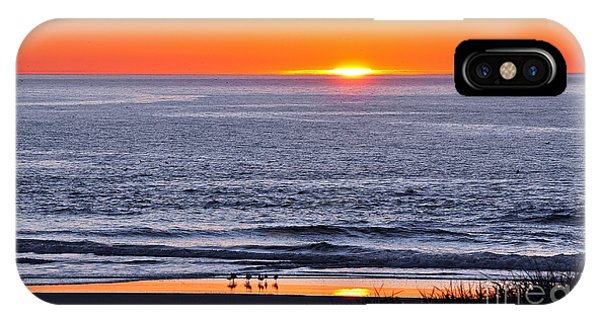 Marbled Godwits Reflecting A Sunset IPhone Case