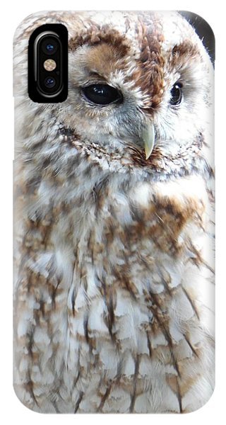 Marbled Owl IPhone Case
