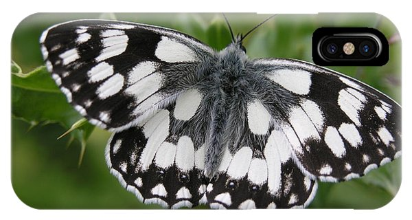 Marbled White IPhone Case