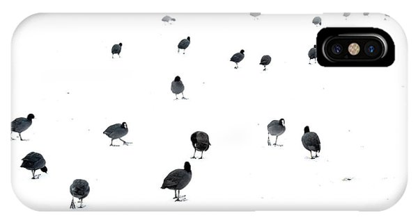 Winter iPhone Case - March Of The Coots by Andrew George