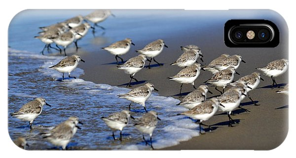 March Of The Sandpipers IPhone Case