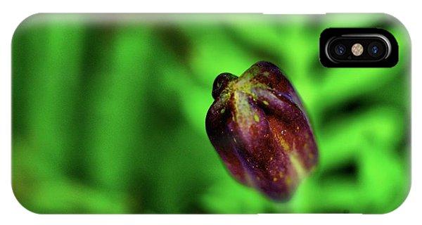Marigold Bud IPhone Case