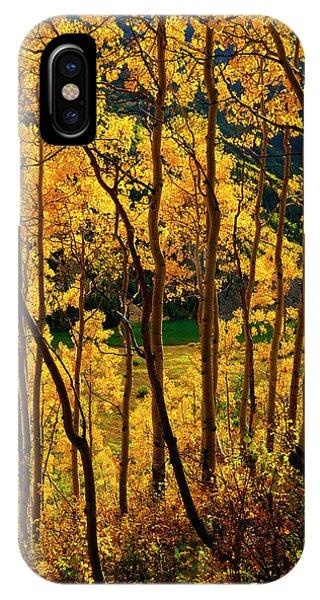 Maroon Lake Gold IPhone Case