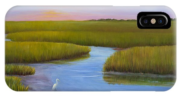 Egrets iPhone Case - Marsh At Low Water by Audrey McLeod