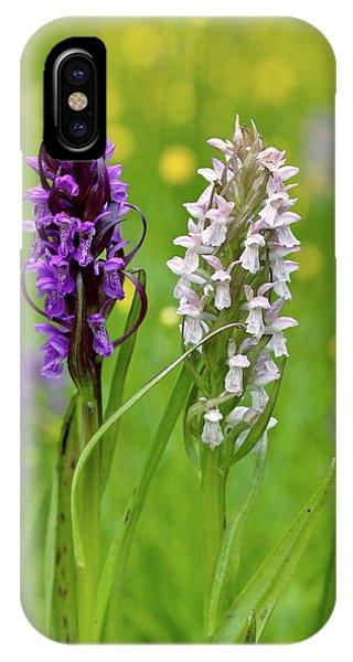 Monocotyledon iPhone Case - Marsh Orchid (dactylorhiza Incarnata) by Bob Gibbons