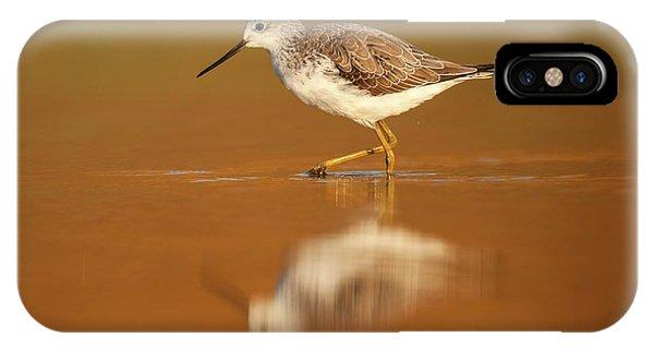 Psi iPhone Case - Marsh Sandpiper (tringa Stagnatilis) by Photostock-israel