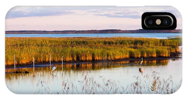 Marsh Sunset IPhone Case