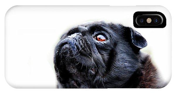 Pug iPhone Case - Martha by Mark Rogan