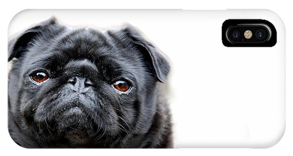 Pug iPhone Case - Martha Pug by Mark Rogan