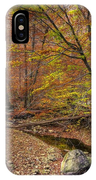 Catoctin Mountain Park iPhone Case - Maryland Country Roads - Autumn Colorfest No. 7 - Catoctin Mountains Frederick County Md by Michael Mazaika