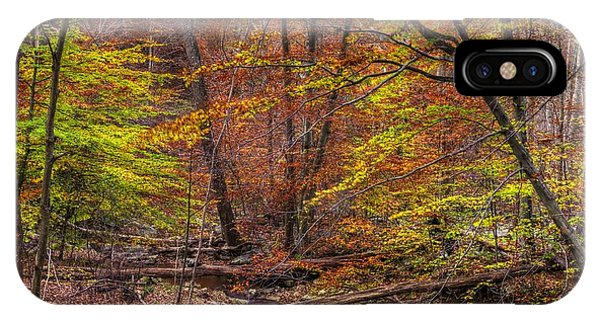 Catoctin Mountain Park iPhone Case - Maryland Country Roads - Autumn Colorfest No. 8 - Catoctin Mountains Frederick County Md by Michael Mazaika