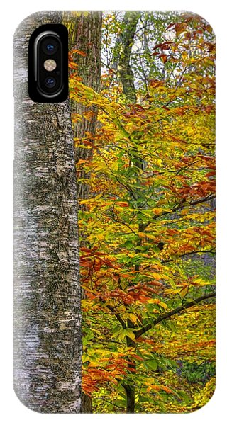 Catoctin Mountain Park iPhone Case - Maryland Country Roads - Color Guard - Cunningham Falls State Park Frederick County Md by Michael Mazaika