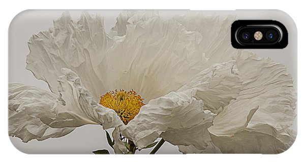 Matilija Poppy White On White IPhone Case
