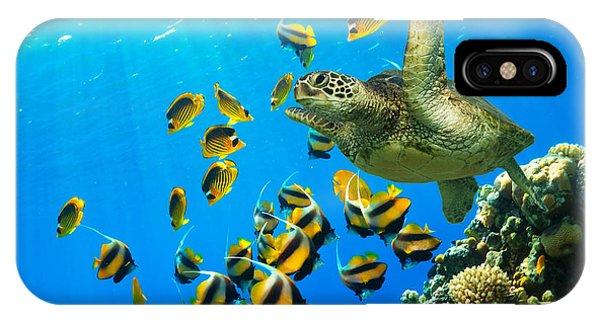 Maui Cruzer IPhone Case