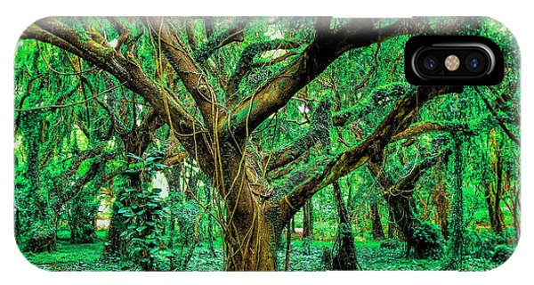 Maui Tree IPhone Case