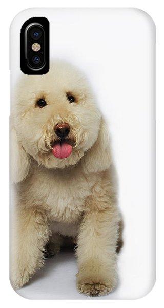 Maxx4 IPhone Case