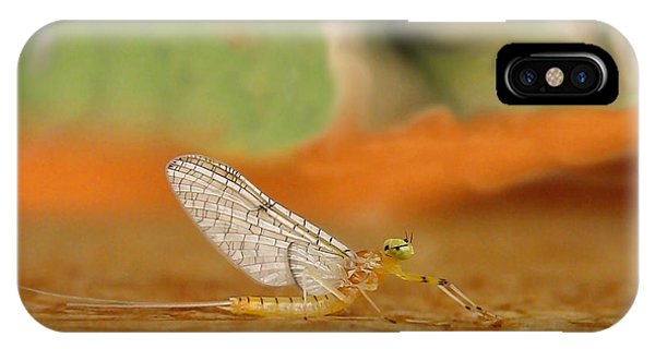 Mayfly Art IPhone Case