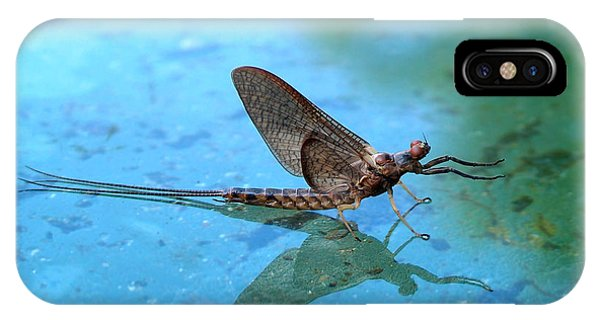 Mayfly Reflected IPhone Case