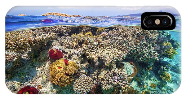 Dive iPhone Case - Mayotte : The Reef by Barathieu Gabriel