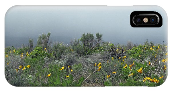 Meadow Fog IPhone Case