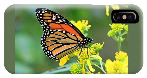 Meadow Monarch IPhone Case