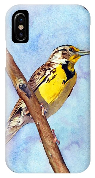 Meadowlark Sunrise IPhone Case