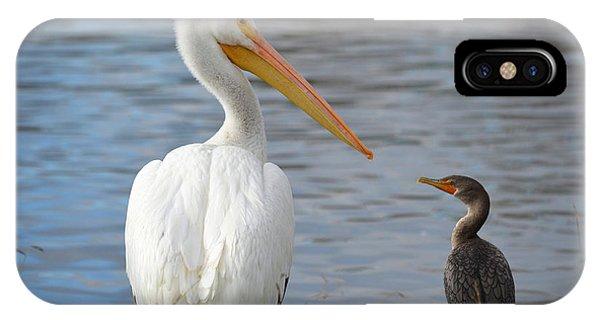 Meeting Of Beaks IPhone Case