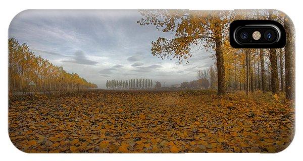 Leaf iPhone Case - Melancholy Day by Radiga