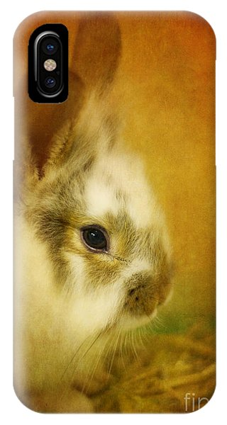 Memories Of Watership Down IPhone Case