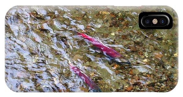 Mendenhall Salmon IPhone Case