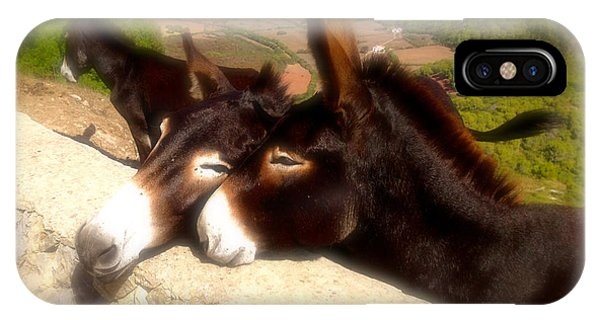 Menorcan Donkeys IPhone Case