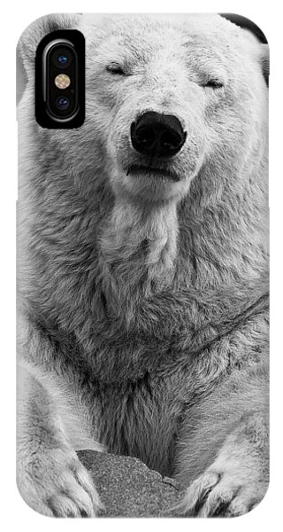 Mercedes The Polar Bear IPhone Case