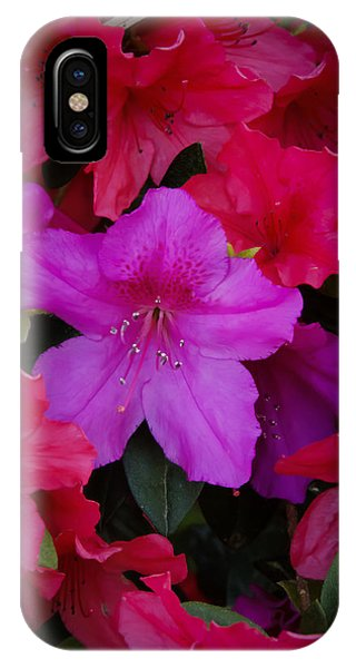 Merging Azaleas 2 IPhone Case