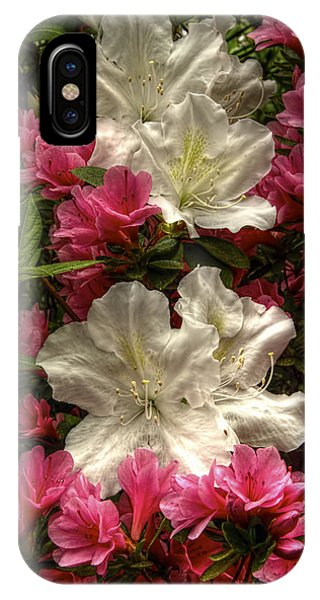 Merging Azaleas  IPhone Case