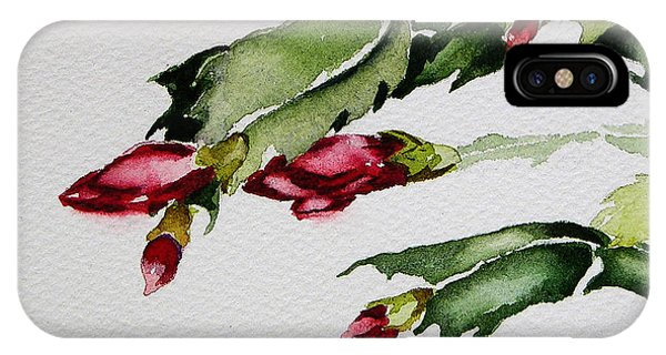 Merry Christmas Cactus 2013 IPhone Case