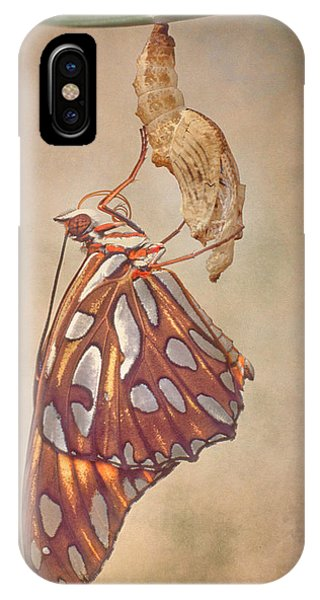 Chrysalis iPhone Case - Metamorphosis by David and Carol Kelly