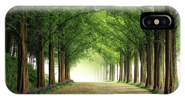 Fog Mist iPhone Case - Metasequoia Road by Tiger Seo