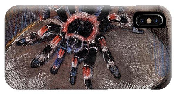 Mexican Redknee Tarantula IPhone Case